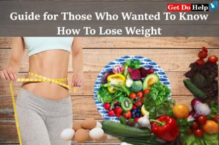 Guide for Those Who Wanted To Know How To Lose Weight
